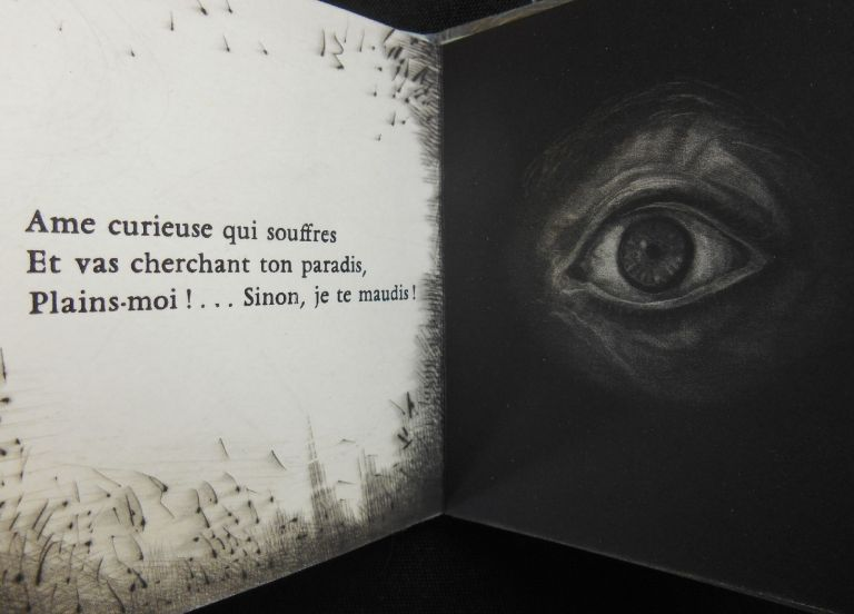 Epigraphe pour un Livre Condamne [Epigraph for a Condemned Book]. Charles Baudelaire, Judith Rothchild, Artist.