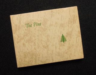 The Pine. George S. Bryan, Alma Fick, Al, Introduction