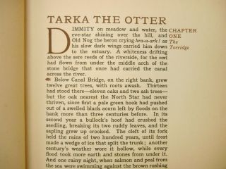 Tarka the Otter; His Joyful Water-Life & Death in the Country of the Two Rivers