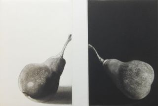 Study of Two Pears / Etude de deux poires [ARTIST BOOK - Judith Rothchild]; A Poem by Wallace Stevens with a translation into French by Bernard Noel and mezzotints by Judith Rothchild