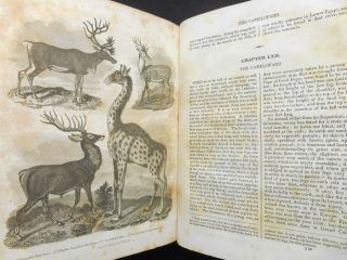 A History of the Earth and Animated Nature; To Which are Added, The Life of the Author, His Deserted Village...